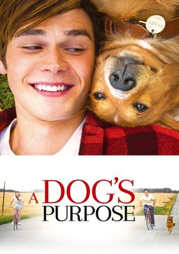 //www.pathe-thuis.nl/film/5221/A+Dog%27s+Purpose