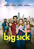 The Big Sick (2017) online kijken